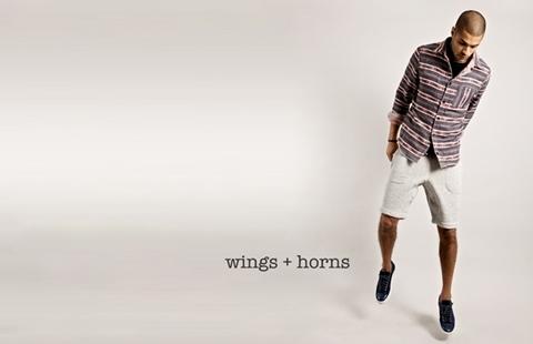 Wings+Horns.jpg